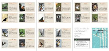 庭にくる野鳥ガイドブック