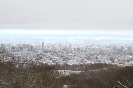 IMG_0008幌見峠から市内を眺望(左手にプリンスホテル&テレビ塔が見えます)