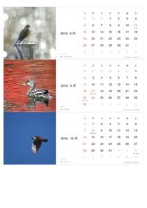 S-WBSJ 40thカレンダー2018-8-9-10月(PDF)
