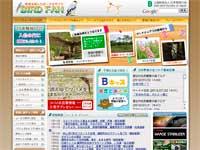 BIRD FANウェブサイトイメージ