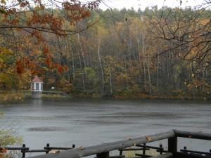 雨・風 西岡水源池