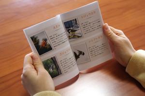 ガイドブック使い方-10