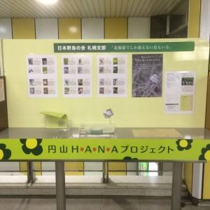 円山公園駅掲示板