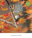 BIRDS IN SEASONS 2013