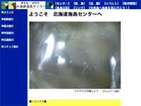 北海道海鳥センターウェブサイトイメージ